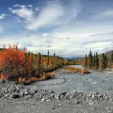 Der Weg zum Mendenhall Gletscher