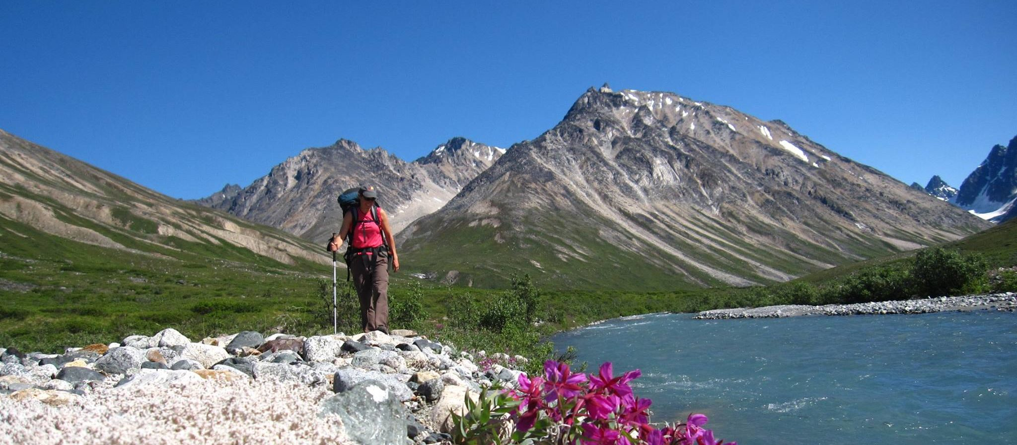 Lake Clark National Park: Wanderer und Wildblumen