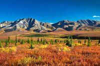 Farbenfroher Herbst in Alaska