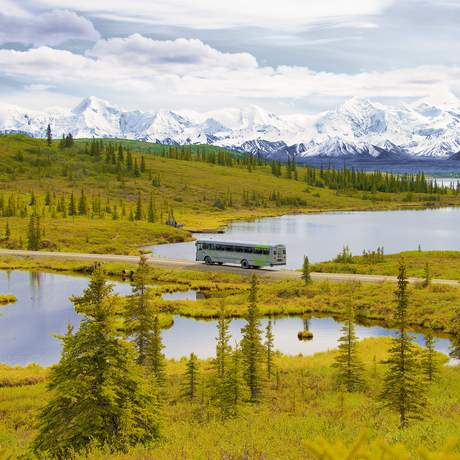 Pursuitcollection - Mit dem Bus durch den Denali National Park in Alaska
