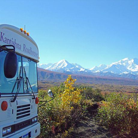Bustour mit Kantishna Roadhouse