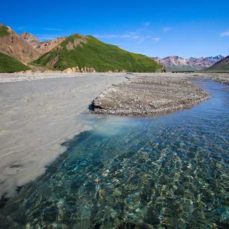 Landschaft im Denali National Park