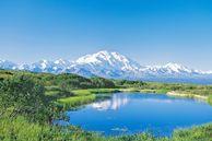 Routenvorschläge USA: Mount McKinley, Denali NP