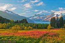Der Mendenhall-Gletscher in malerischer Landschaft
