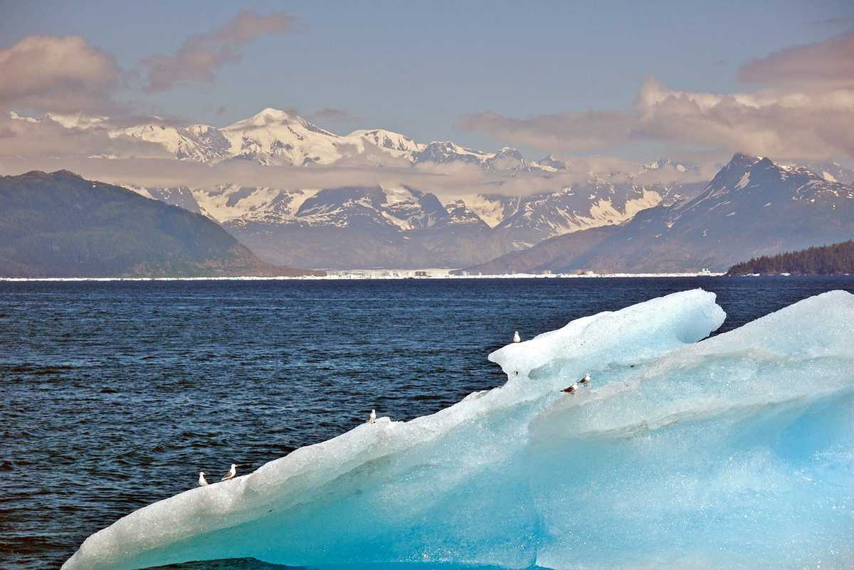Eisscholle im Prince William Sound