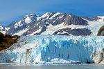 Glacier Bay National Park - Tagesausflug