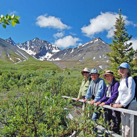 Alaska Yukon Explorer