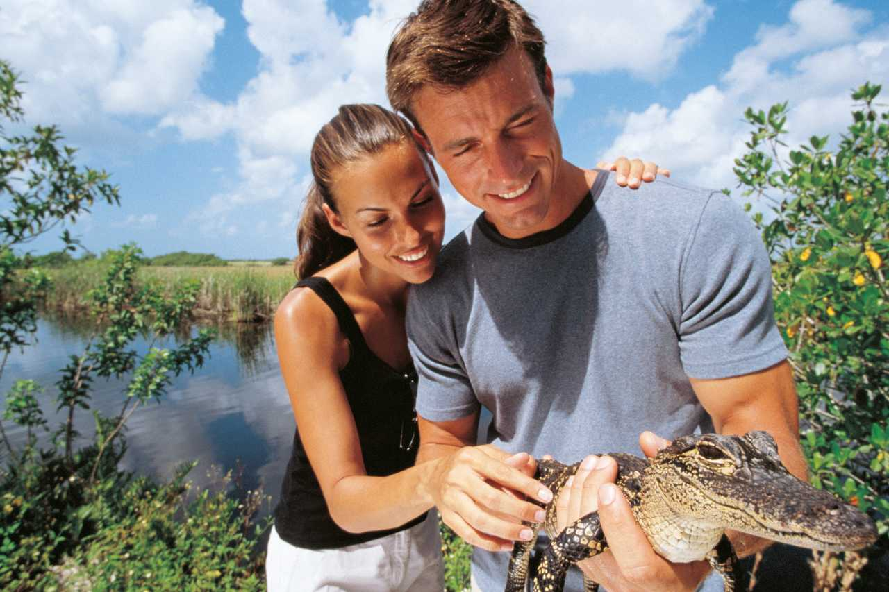 everglades city chatrooms Florida webcams florida was discovered by a spanish explorer this state became a part of united states (union) on march 3rd, 1845 the current capital city of.