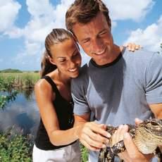 Paar mit jungem Alligatoren