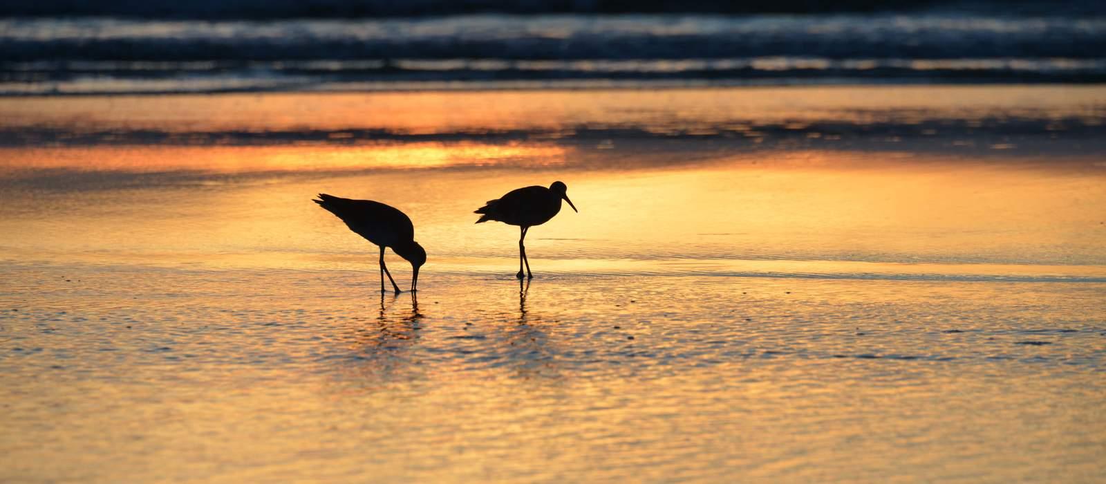 Sonnenuntergang am Daytona Beach