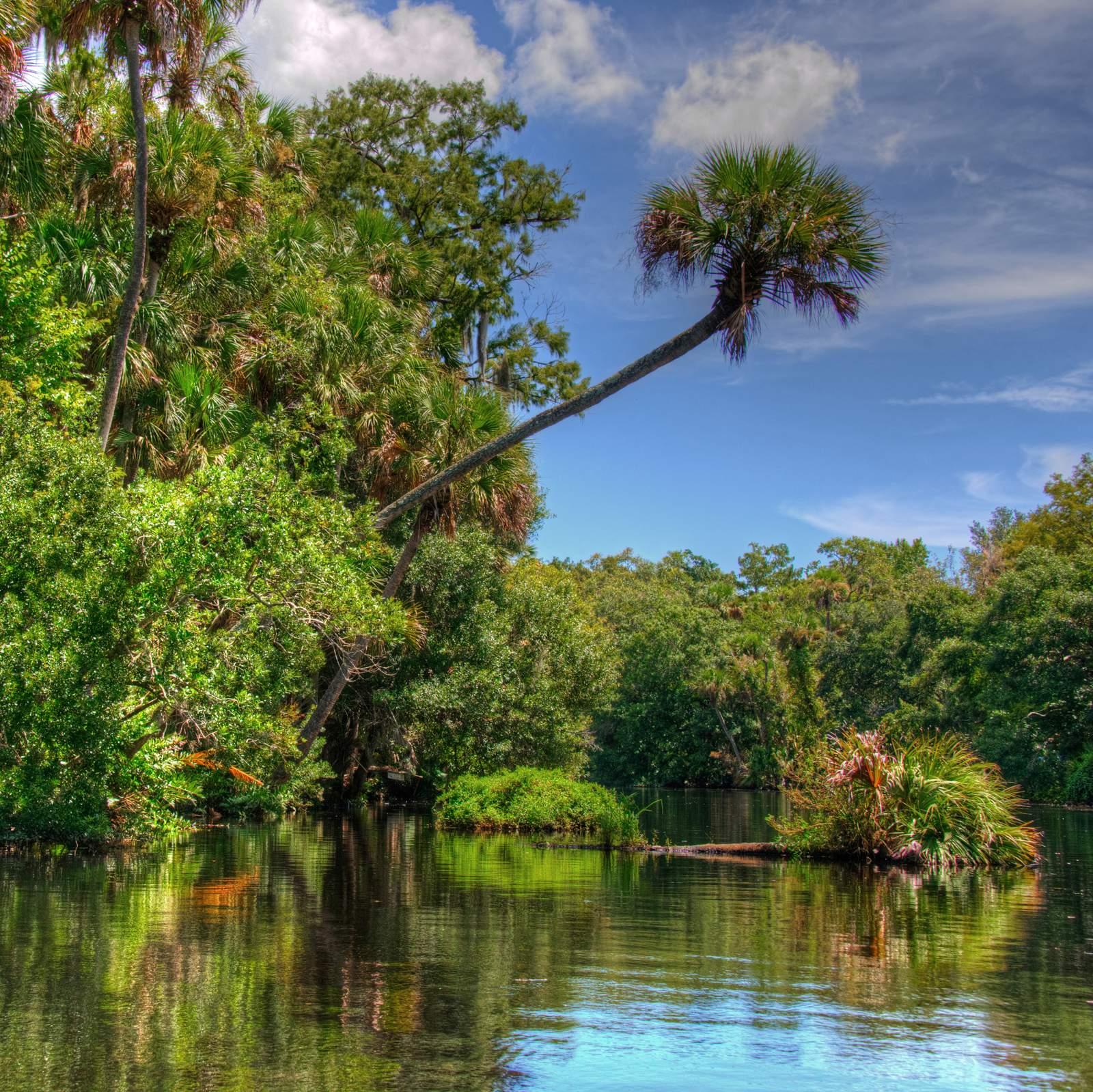 Der Halifax River in Florida