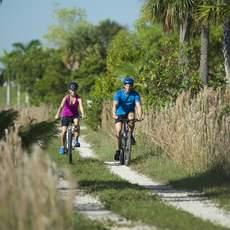 Ein Pärchen unterwegs durch die Natur Floridas