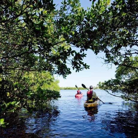 Kayak Fahren Bei Fort Myers
