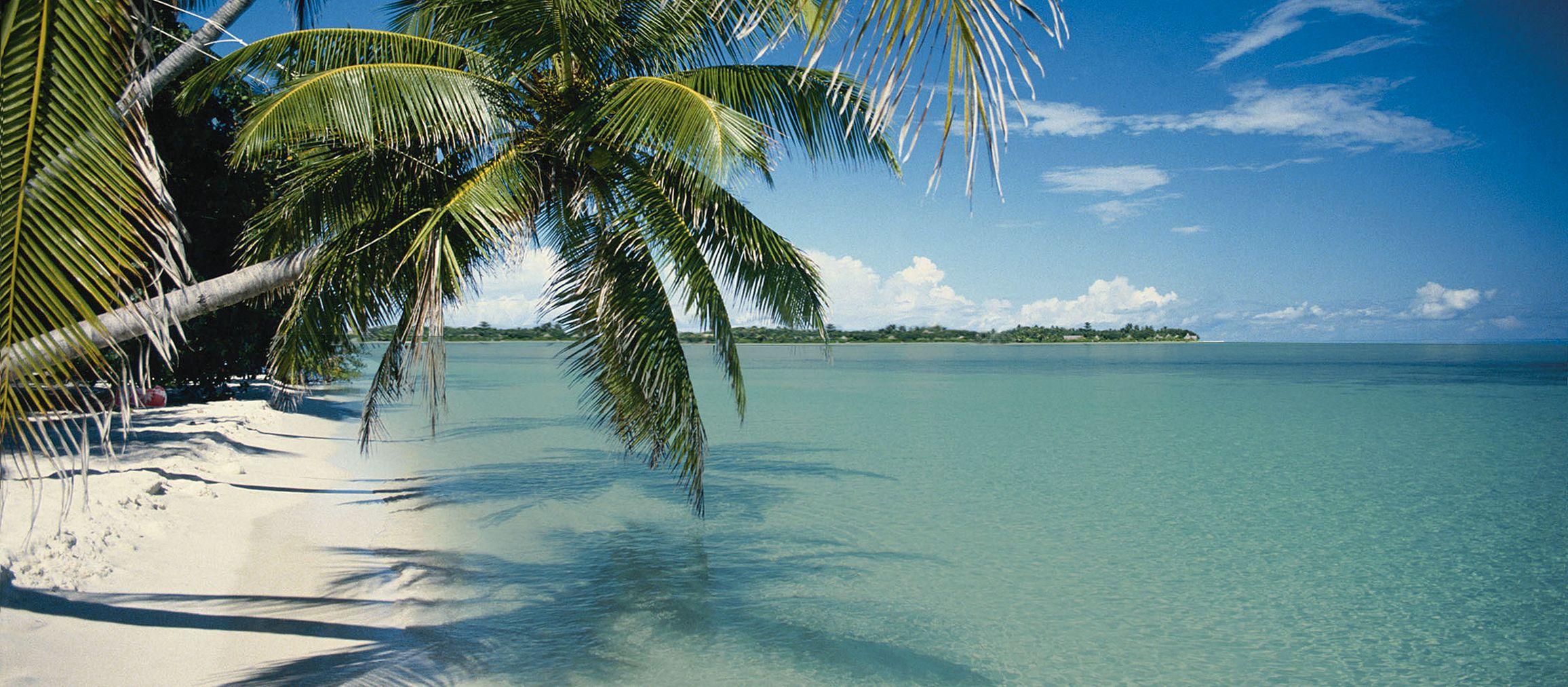 Blick auf den Strand von Key Largo