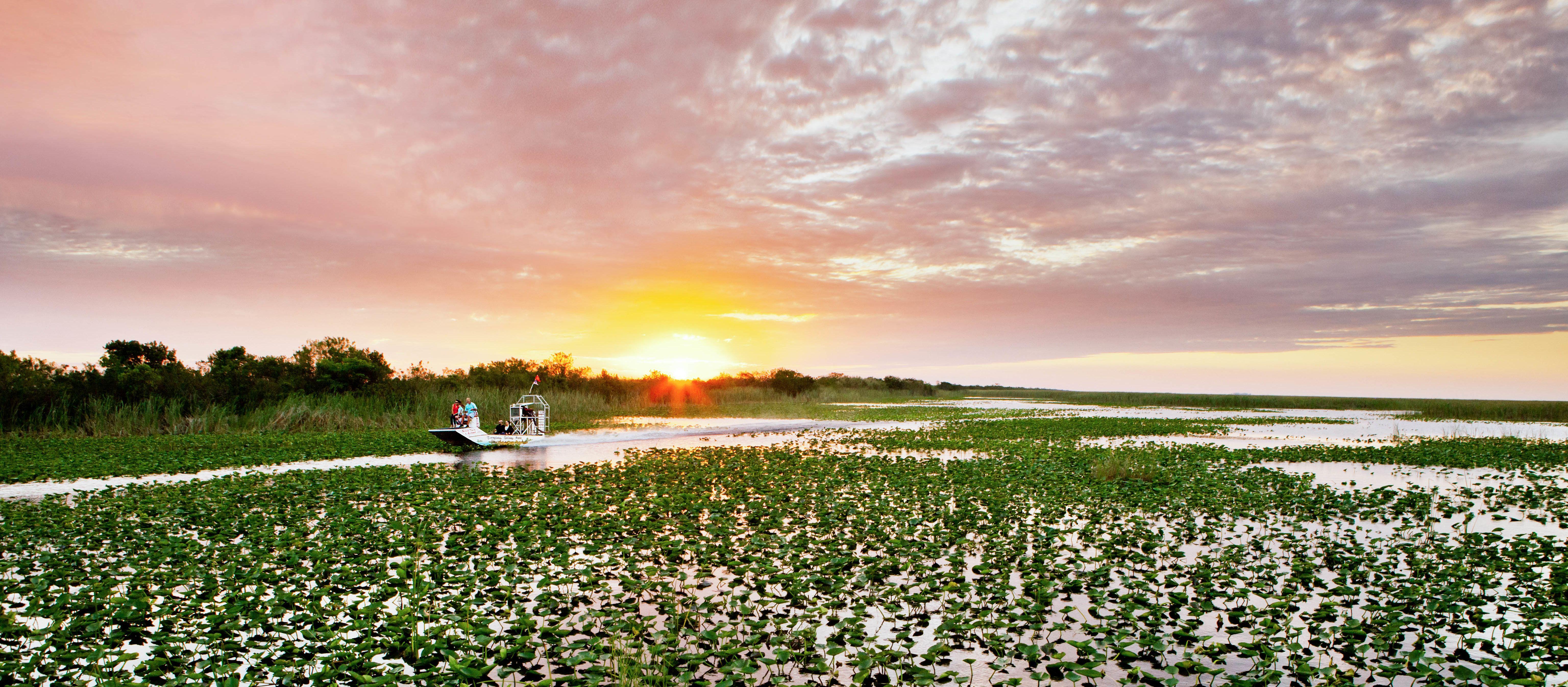 Unterwegs mit einem Luftboot durch die Everglades in Florida