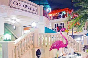 Der Cocowalk Markt Coconut Grove in Ihrem Miami Urlaub