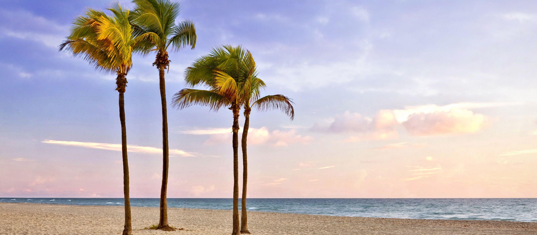 Den Blick auf den Miami Beach in Florida mit dem Atlantischen Ozean im Hintergrund genießen