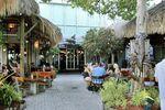 Insider Tipp für Ihren Miami Urlaub