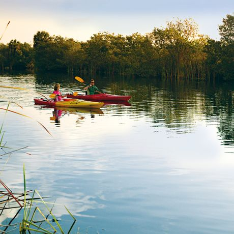 The Gulf Coast Everglades provides endless opportunity for paddlers to explore the mangrove estuaries, creeks and rivers of the Ten Thousand Islands leading out to the Gulf of Mexico. Explore the newly plotted Paradise Coast Blueway paddling trail routes or the Everglades Wilderness Waterway.