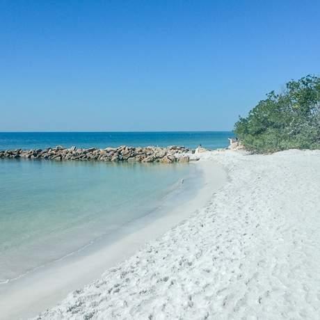Ein Strandabschnitt in Sarasota