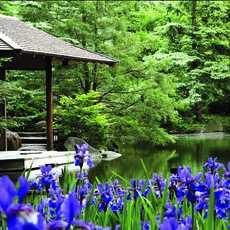 Der Pond Strolling Garten in Rockford