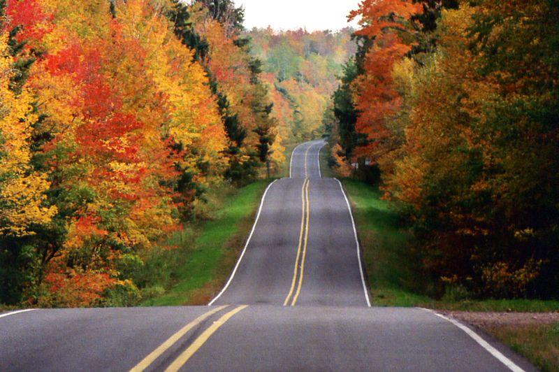 Langsam Wirds Herbst Seite 3