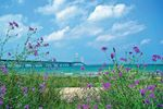 Mackinac Island in Michigan