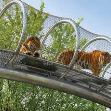 Der Philadelphia Zoo war der erste offiziellen Zoo der USA