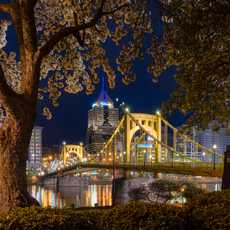 Die Roberto Clemente Bridge in Pittsburgh bei Nacht
