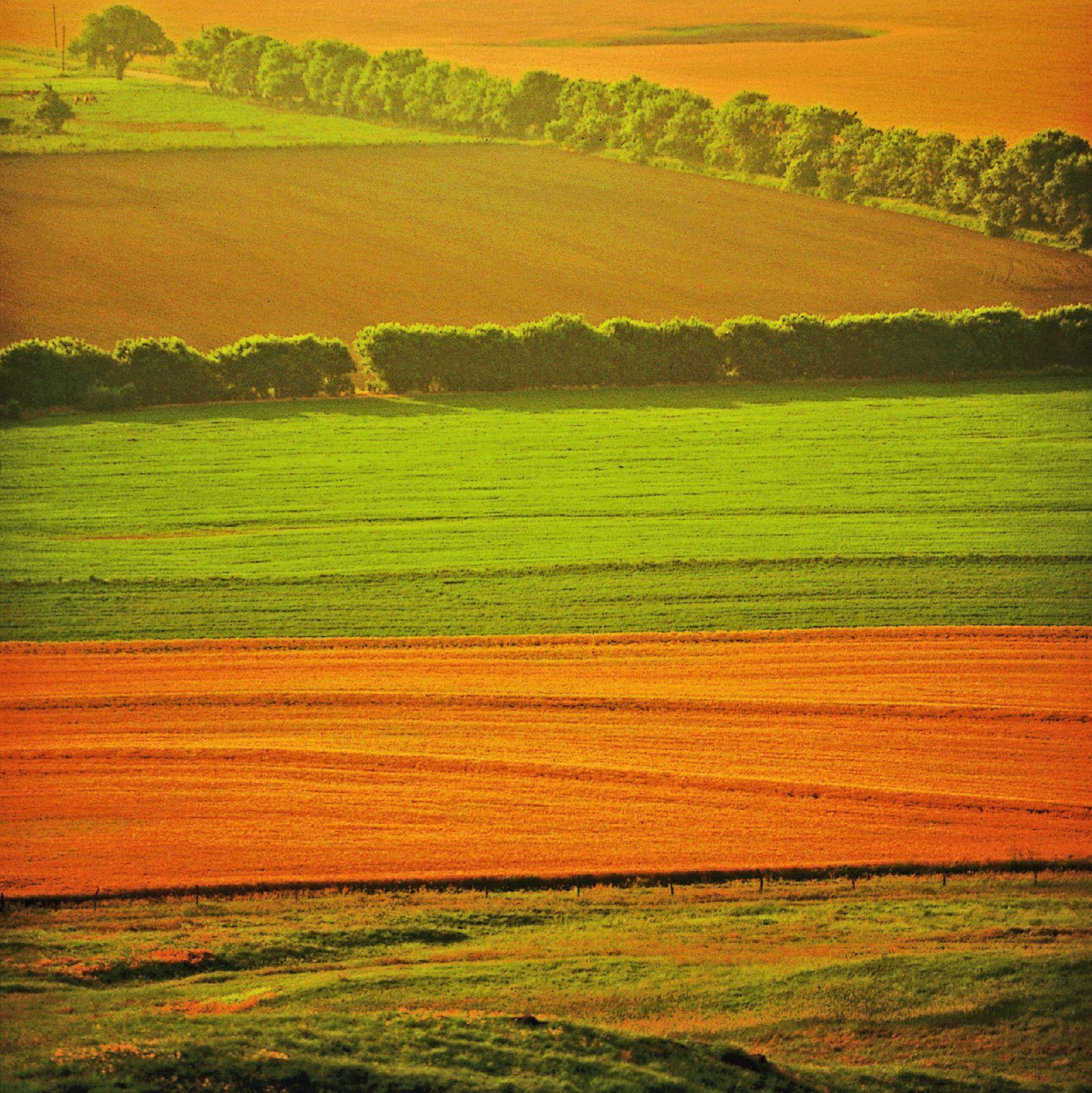 Endloses Farmland