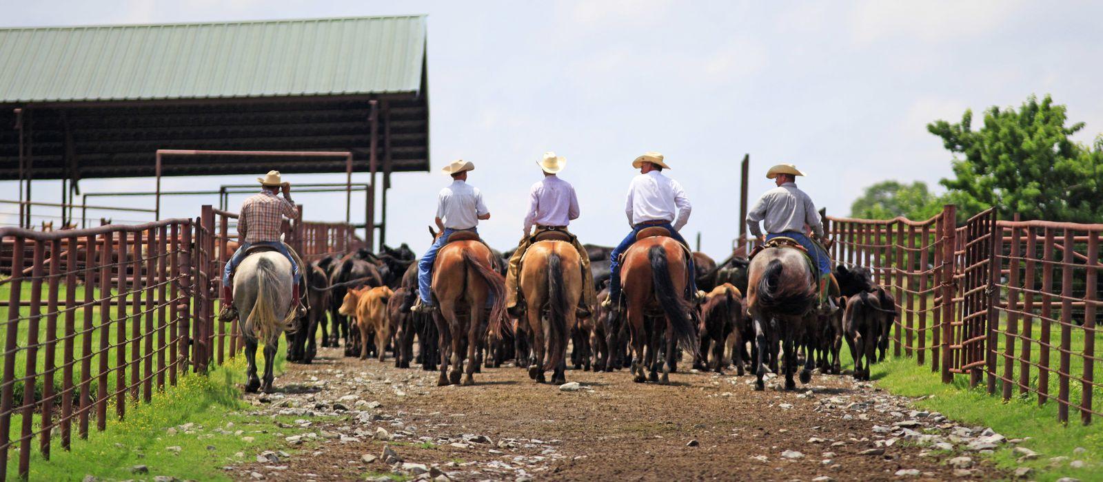 A Bar Ranch in Claremore, Oklahoma