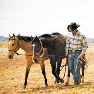Traditioneller Cowboy mit seinen Pferden in Texas
