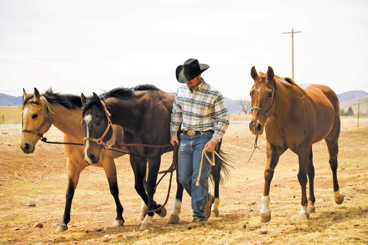 Cowboy Kultur In Texas Entdecken Canusa