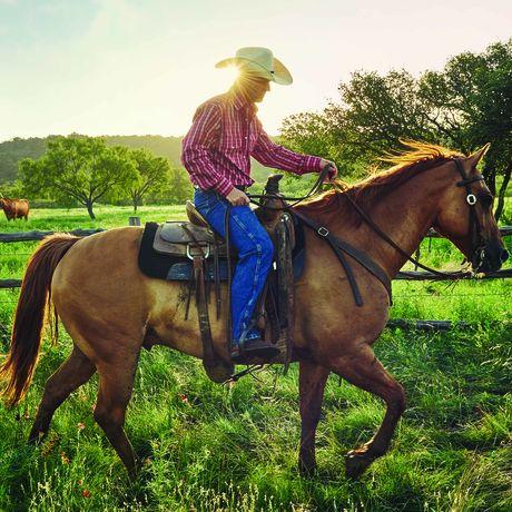 Ein Cowboy und sein Pferd des Wildcatter Ranch Resorts and Spa in Graham