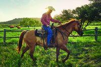 Cowboys & Cities