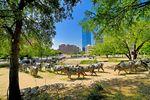 Der Pioneer Plaza Park in Dallas