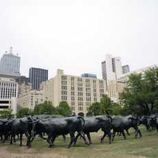 Roundup Skluptur in Dallas, Texas