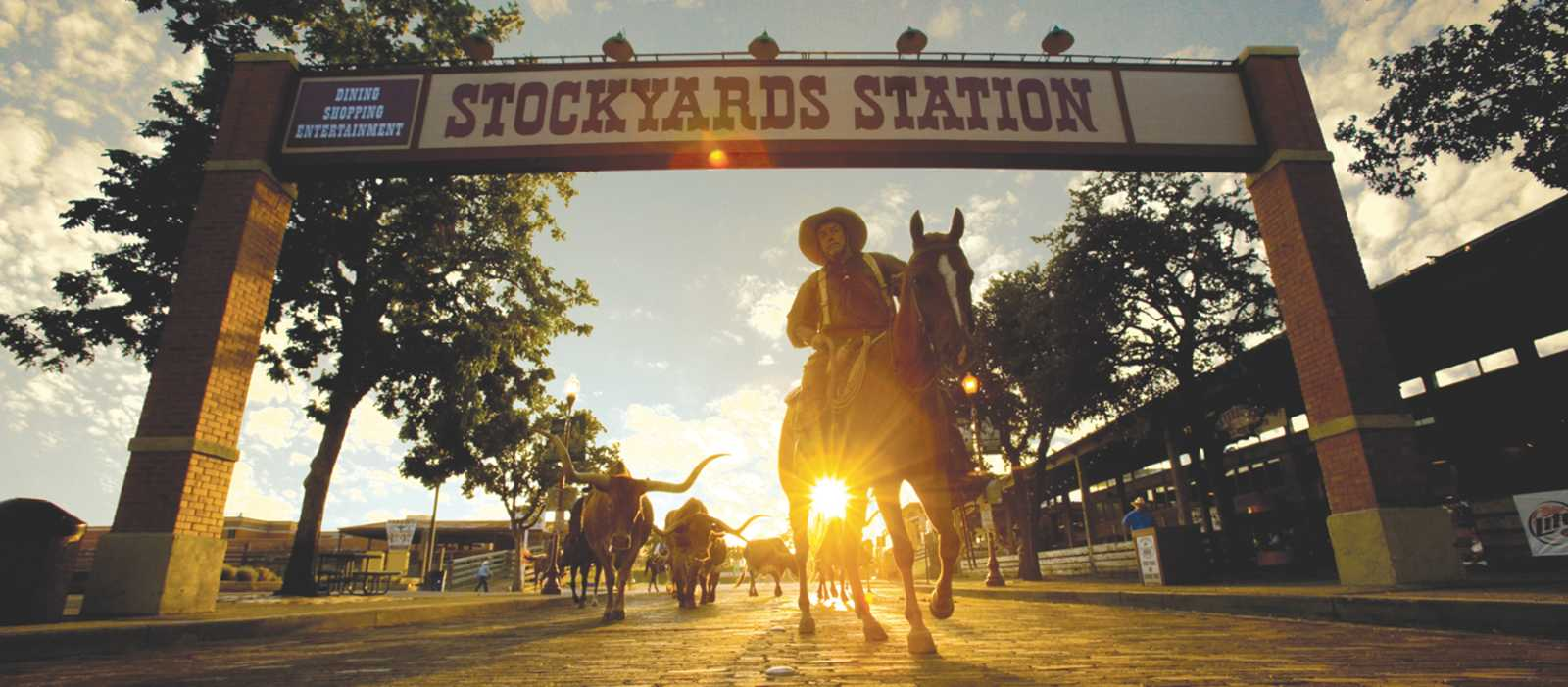 Stockyard Station