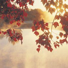 Herbslticher Sonnenaufgang