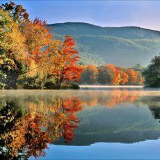 Herbstwald am Fluss