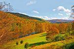 Schöne Herbstlandschaft in den Neuenglandstaaten