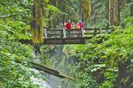 Von den Rockies bis zum Regenwald
