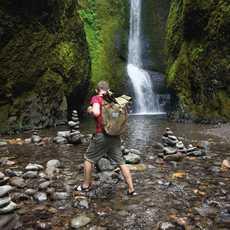 Wanderung in der Nähe vom Columbia River Groge