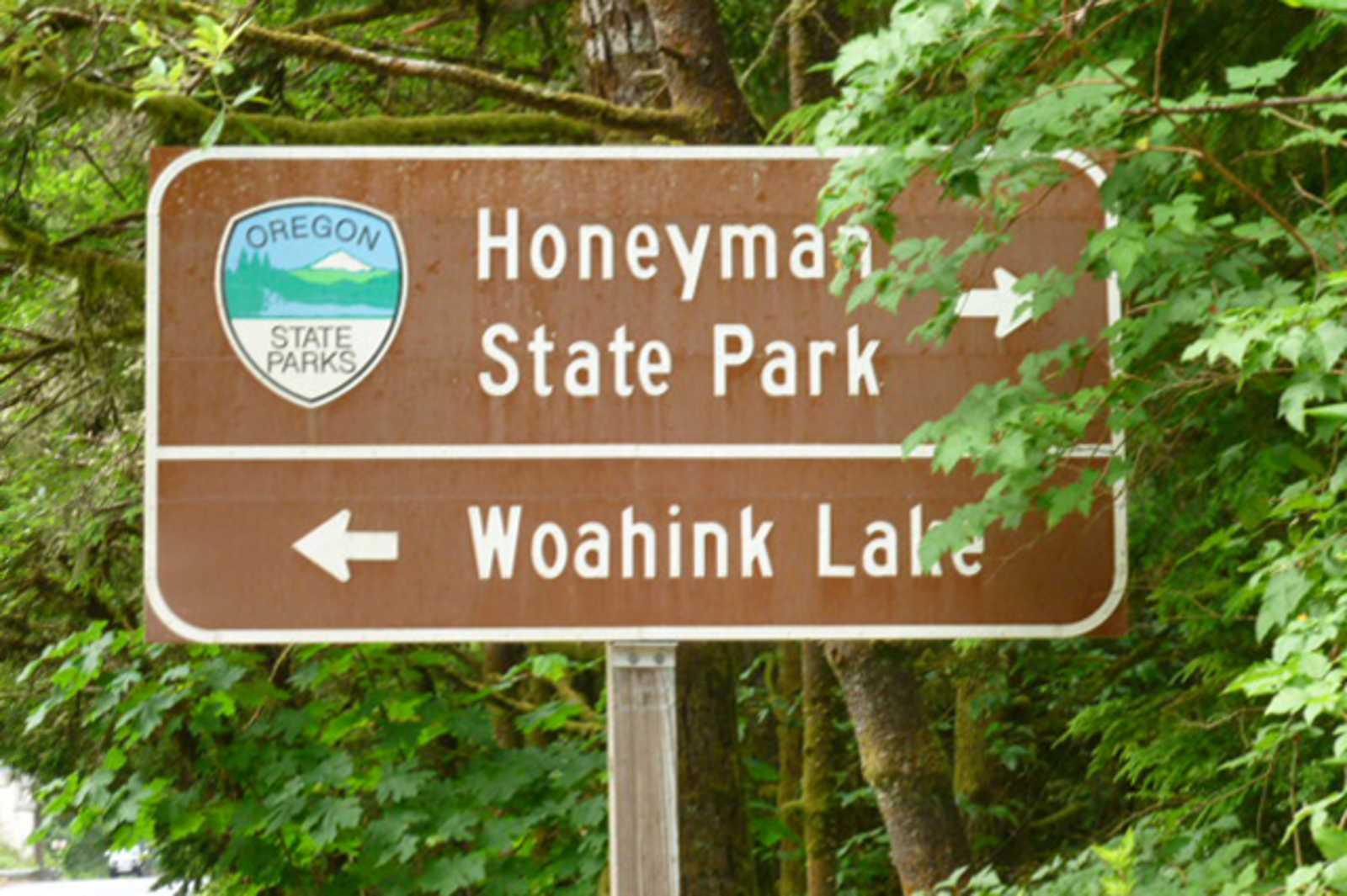 Straßenschild Jessie M. Honeyman Memorial State Park in Oregon