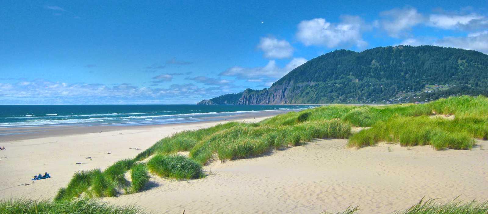 Beach Dunes im Nehalem Bay State Park