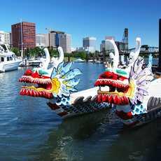 Drachenboote in Portland