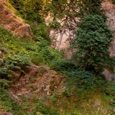 Multnomah Falls, Portland, Oregon