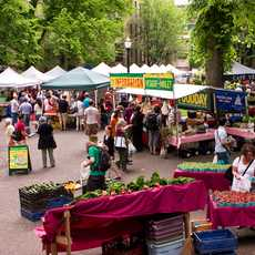 Farmers Market in Portland, Oregon
