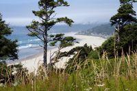 Wunderschöne Pazifikküste