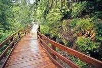 Regenwälder & Küste
